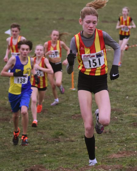 Competitors in the U15 girls and boys race in the Norfolk Cross Country Championships at Thetford. P