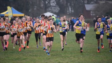 The start of the U15 girls and boys race in the Norfolk Cross Country Championships at Thetford. Pic