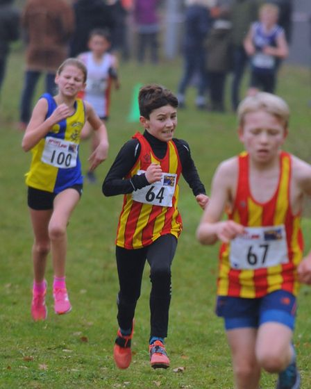 Competitors in the U13 girls and boys race in the Norfolk Cross Country Championships at Thetford. P