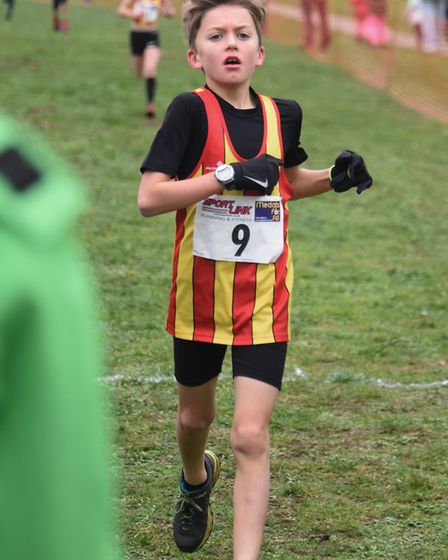 A competitor in the U11 girls and boys race in the Norfolk Cross Country Championships at Thetford.