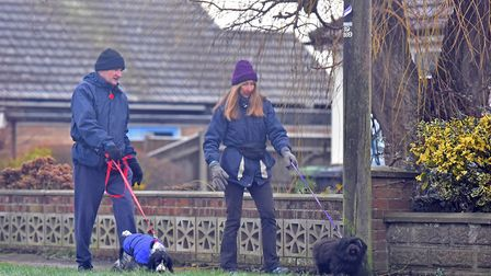 Caister Dog Walkers. PICTURE: Jamie Honeywood