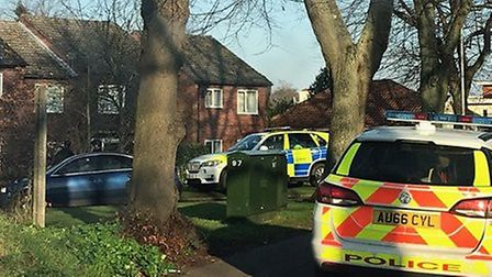 Armed police and a dog unit were seen at Apsley Court in Norwich. Picture: Evie McLoughlin