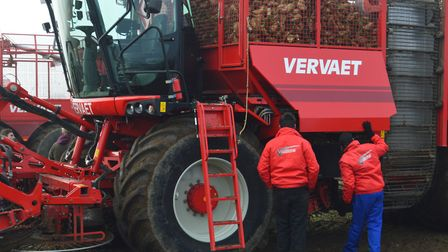 More than 500 farmers gathered in Attlebridge for the J Riley Beet Harvesters demonstration day. Pic