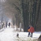 Temperatures reach the minus and snow expected this weekend. Picture: Archant