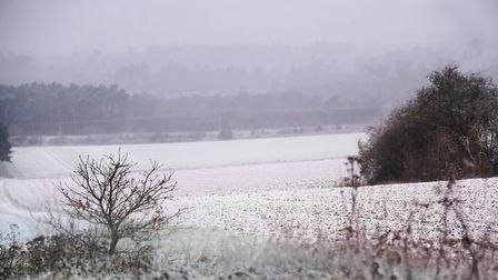 A wintry scene as snow falls in Thetford. Picture: DENISE BRADLEY