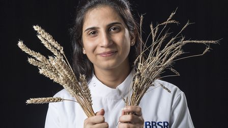 Crop researcher Dr Sanu Arora of the John Innes Centre with domestic wheat and a wild relative. Pict