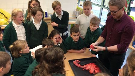 Year 6 pupils at Albert Pye are learning about keeping healthy and how our bodies work. They had the