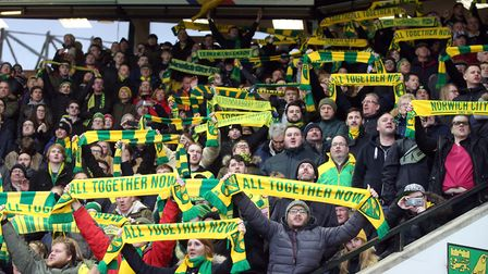 The Snake Pit helped paint Carrow Road yellow and green Picture: Paul Chesterton/Focus Images