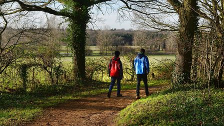 Marriott's Way trail in Norfolk. Picture: NORFOLK COUNTY COUNCIL