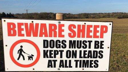 A sign on a Norfolk footpath aimed at preventing farm livestock from attack by dogs. Picture: Lauren