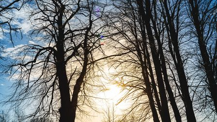 Picture taken during the Glaven Ward photography walk at Hellesdon Hospital. Photo: NSFT