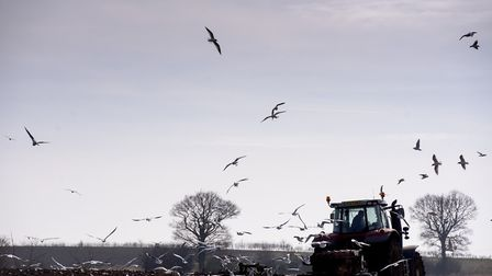 Farmers cannot afford to pay 'lip service' to health and safety inspections, an agricultural expert