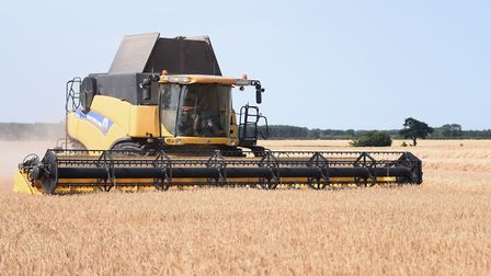 Norfolk's cereal farmers will get no import tariff protection in the event of a no-deal Brexit. Pict
