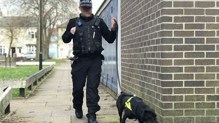As part of Operation Sceptre, Norfolk Police swept the streets of Norwich in search of knives. Pictu