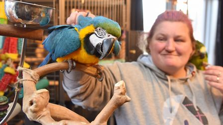 Claire Baggott has already rehomed two of her birds. Byline: Sonya Duncan Copyright: Archant 2019