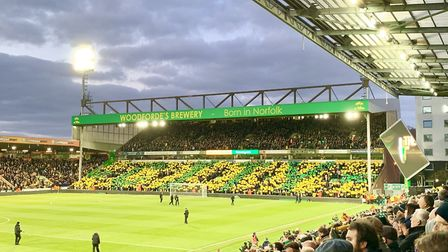 The view of the mosaic at Carrow Road. Picture: Emily Smith