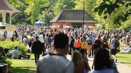 Scenes from the Norfolk and Norwich Festival Garden Party. Picture: Ian Burt