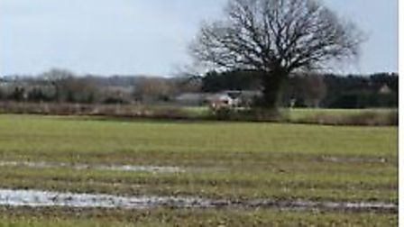 Oakes Farm in Carlton Colville could be the site of new sports facilities, according to the Waveney