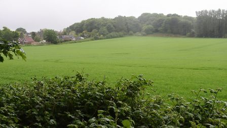 The field off Farmland Road at Costessey, where a planning application for 83 homes has been rejecte