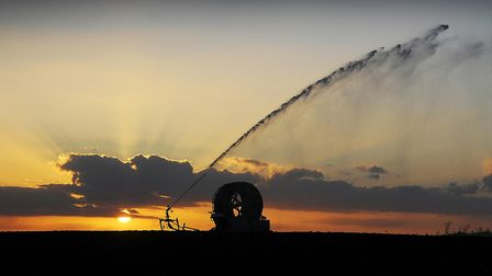 Irrigation licences are under threat in the Ant Valley. Picture: Ian Burt.
