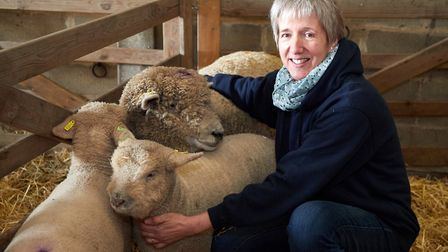 Gail Sprake of the Rare Breeds Survival Trust with some Southdown sheep. Picture: Keiron Tovell.