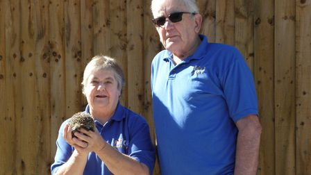 PACT helps wildlife, as well as domestica animals Picture: Chris Rockingham
