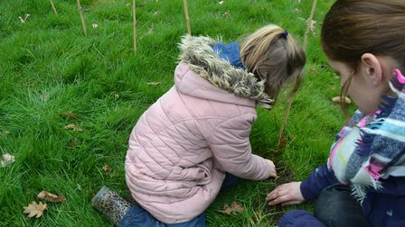Bunwell Primary School children planted 400 trees on their Forest School site. Photo: Bunwell Primar
