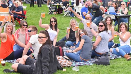 Music lovers enjoyed the first ever Norwich Fake Festival at Eaton Park in 2018. Picture: Nick Butch