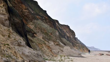 Bacton cliffs where netting has been put in place which will stop Sand Martins from nesting. PICTURE