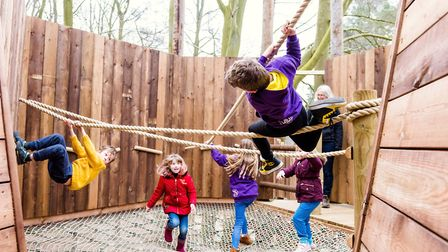 Youngsters enjoying the new Towering Treetop Tangles attraction at BeWILDerwood. Pic: submitted