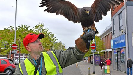 Simon Rouse with the hawk, which has been flying over Lowestoft town centre to warn off seagulls, co