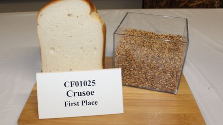 Bread made from Alex Wilcox's award-winning sample of milling wheat. Picture: AHDB