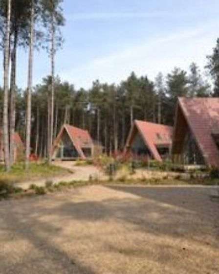 Do you fancy escaping from it all at this woodland holiday lodge for sale. Pic: Watsons Period & Pre