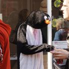 Dr Edwin Salter highlights the penguin's plight to shoppers in King's Lynn Picture: Chris Bishop