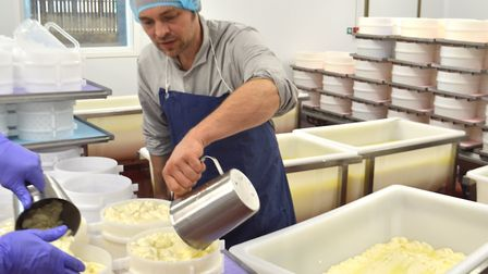 Jonny Crickmore ladelling curd inside the new cheese-making building at Fen Farm Dairy near Bungay.