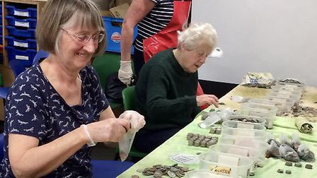 Friends of the Norwich Museums volunteers counting coins from the Castle Museum well. Picture: FNM