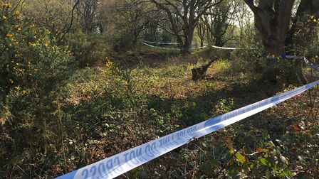 The man who was found dead at Mousehold Heath in Norwich on Easter Monday is named as Mark Sewell. P