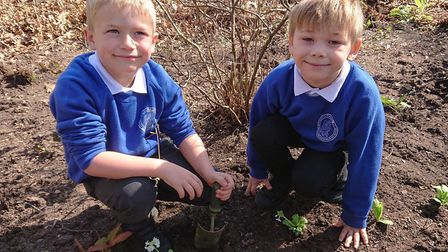 Children from Fairhaven Primary School helped councillors plant a new flower bed at the Fairhaven Wo