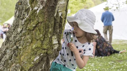 Getting hands of with nature at Pensthorpe - Beth Nixon on a bug hunt at Natural Park's Wild About t