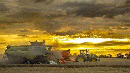 A combine harvester at work in Thorney. Picture: Ieuan Williams