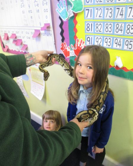 Year 1 children at Angel Road Infant School were visited by African animals from Kimmy's Zoo. Photo: