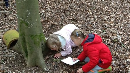 Robin and Jay Class at Brooke VC CE Primary School enjoyed scavenger hunts in the woods. Photo: Broo