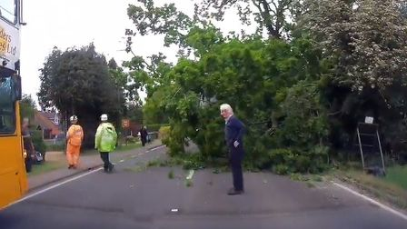 Screengrabs from dashcam footage showing a tree which fell on a lorry on at A140 at Hainford. Photo: