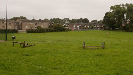 An 18-year-old man has been arrested following a stabbing in Pointers Field park in Norwich. Picture