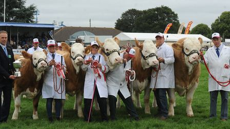 The winners of the Heygate County Feeds Team of 5 Competition at the Royal Norfolk Show 2019. Pictur