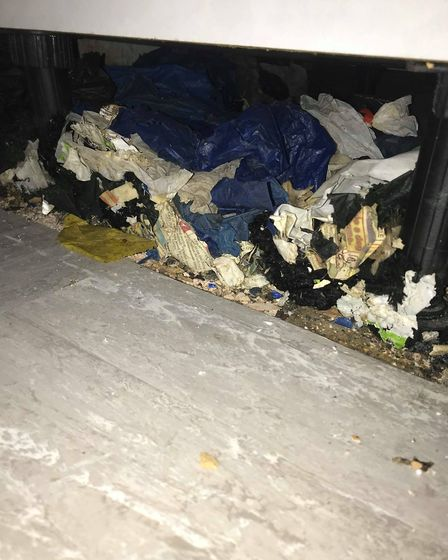 Charli Denton found heaps of rat droppings and two dead rats in her Norwich council home soon after