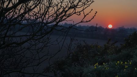 Wiveton Down sunset. Picture: Mary Groombridge