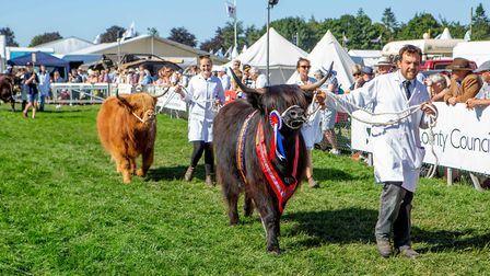The Gramd Parade of Livestock is a highlight in the Grand Ring Picture: Lee Blanchflower