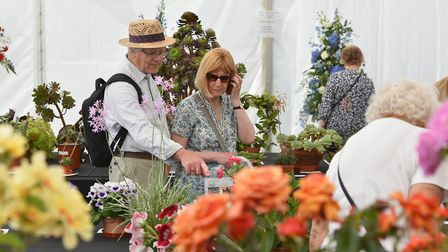 The horticulture Area features everything from exotic plants to garden structures, from house plants