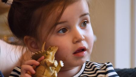 Two-year-old Darcie Lewis with her dinosaurs at her home in Poringland. Darcie is tall for her age,